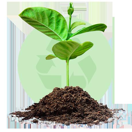 Procesos verdes, sin desperdicios